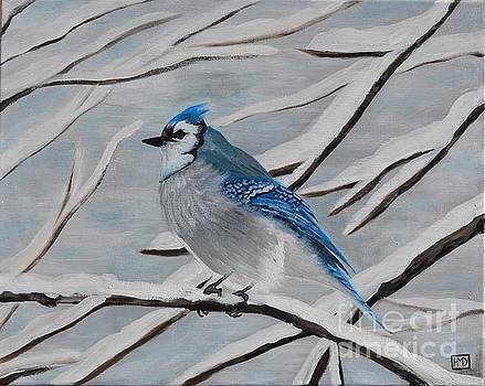 Blue Jay by Holly Donohoe