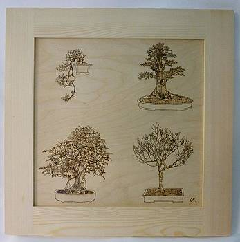 Bonsai Pyrographic Art Original Panel with Frame by Pigatopia by Shannon Ivins