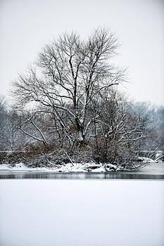 Carnegie Lake by Frank DiGiovanni