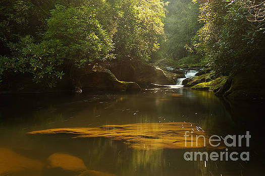 Chattooga River at Dawn by Matt Tilghman