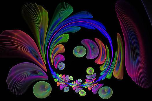Electric Wreath by Rick Chapman