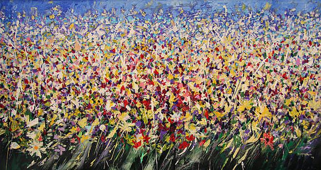 Flower field by Mario Zampedroni