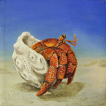 Hermit Crab by Cindy D Chinn