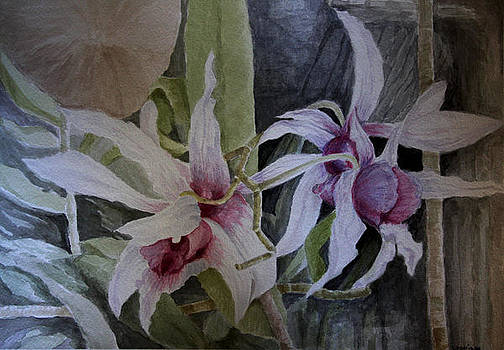 Orchids in bloom - 1 of 5 by Sonia Rodriguez