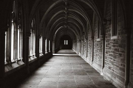 Princeton U by Frank DiGiovanni