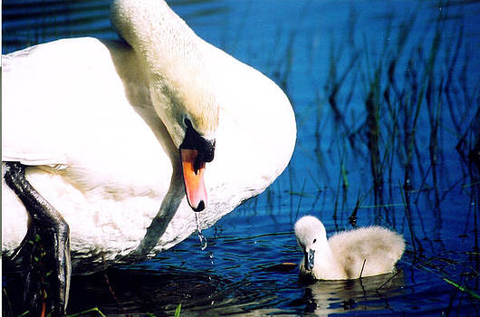 Proud Mother by Lee Yeomans
