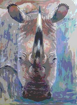 Rhino by Samuel Daffa