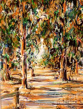 Stanford Eucalyptus Grove by Dee Davis