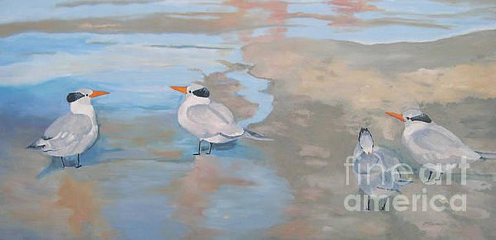 Terns on the Beach Florida by Joan McGivney
