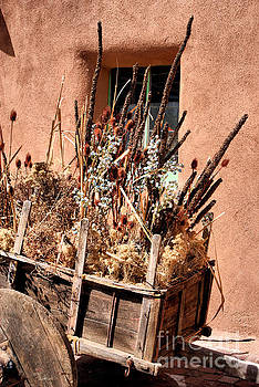 Textures of Taos by Linda Eshom