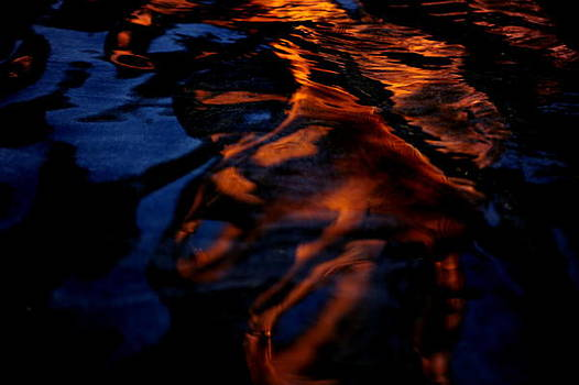 Water At Night by Frank DiGiovanni