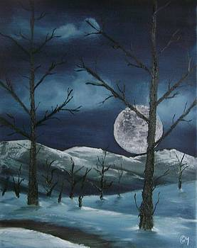 Winter Night by Charles and Melisa Morrison