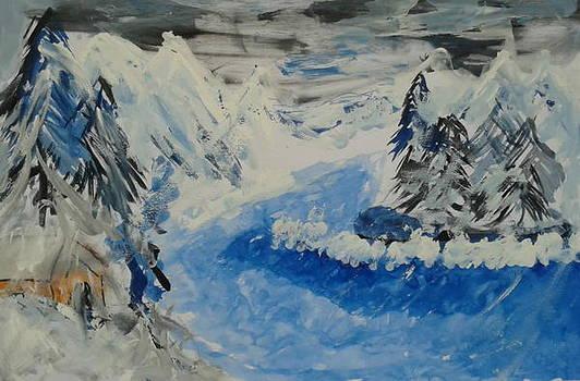 Winter Wonderland by Salim Ahmad Gorwal