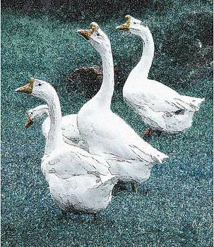 4 Ducks by Marilyn Marchant