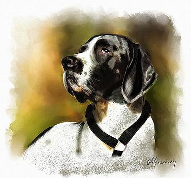 Pet Dog Portrait by Michael Greenaway