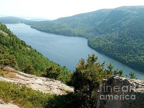 Acadia Lake by Theresa Willingham