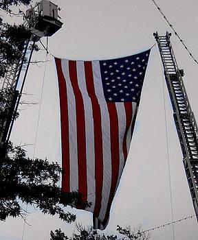 American Flag by Ruthanne McCann