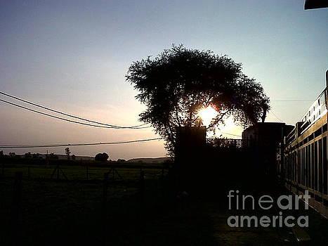 An Evening In Village by Salim Ahmad Gorwal