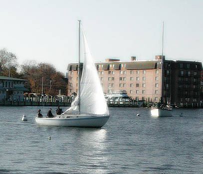 Annapolis Sail Boat by Marilyn Marchant