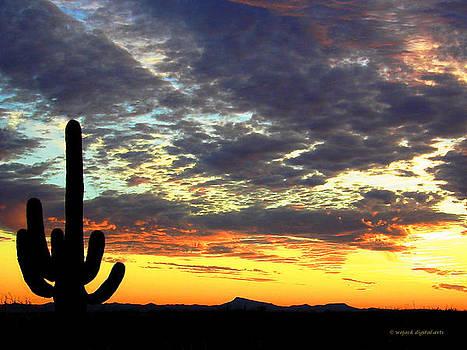 Arizona Western Sky by Walt Jackson