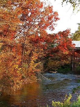 Autumn Along The Crystal River by Victoria Sheldon