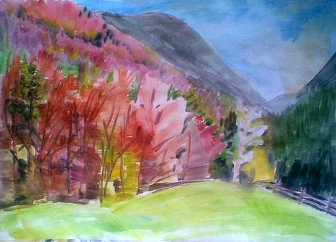 Autumn In The Mountains by Vaidos Mihai