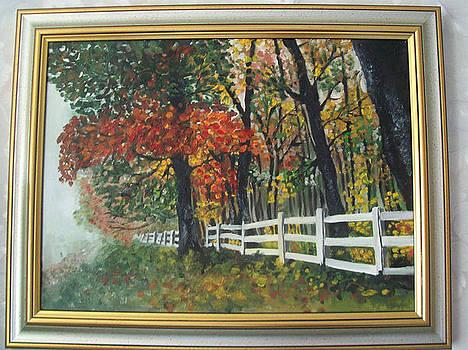 Autumn by Larisa M