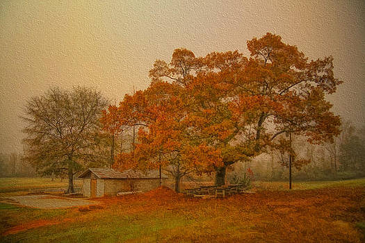 Autumn Textures by James Corley