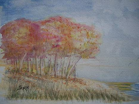 Autumn Trees and Sea by Spencer  Joyner