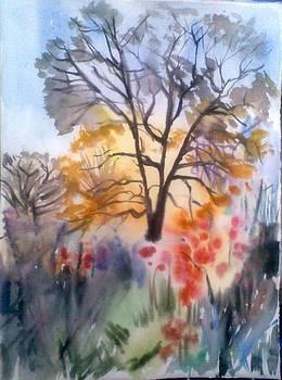 Autumn2 by Vaidos Mihai