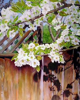 Backyard Beauty by Lorna Saiki