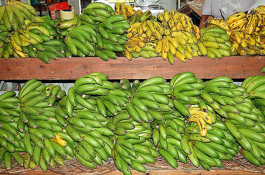 Banana's For Sale by Debbie Cook