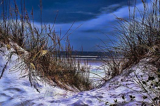 Beach Cleavage by Joetta West