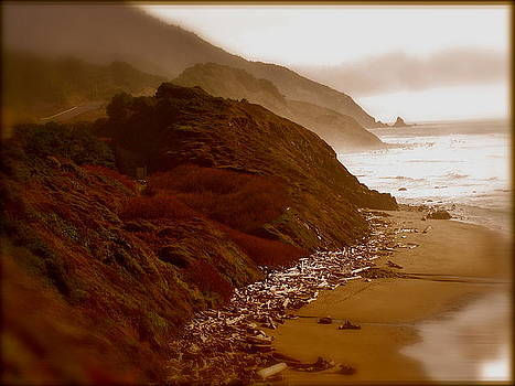 Beaches by Amber Hennessey