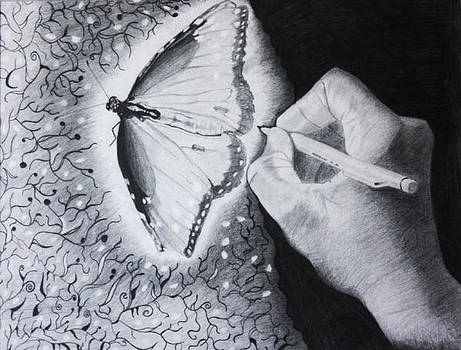 Beautifly by Saheed Fawehinmi