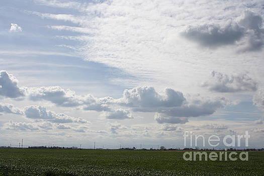 Beautiful Day II by Lea Cypert