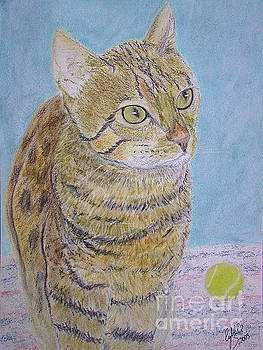 Bengal Cat by Cybele Chaves