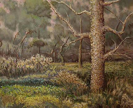Big Stick by Timothy Henneberry