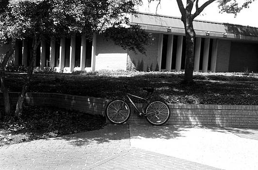 Bike by Shelia Bull