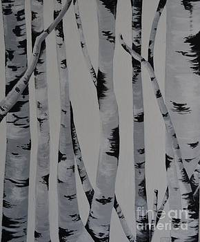 Birch Trees by Holly Donohoe