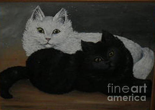 Black and White Cats by Hilda Schreiber