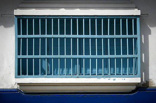 Blue Bars Dos by Shane Rees