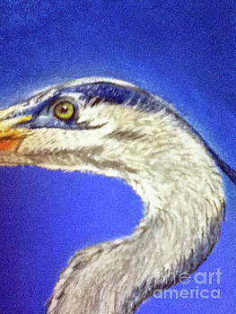 Blue Heron close-up by Teresa Vecere
