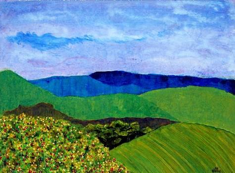 Blue Ridge Springtime by Jerry Hanks