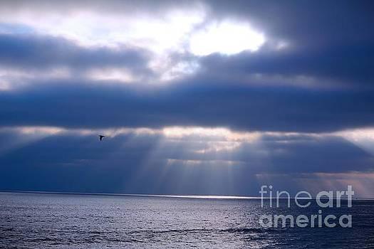 Blue Skies by Kim Pascu