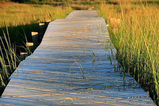 Boardwalk by Doug Hockman Photography
