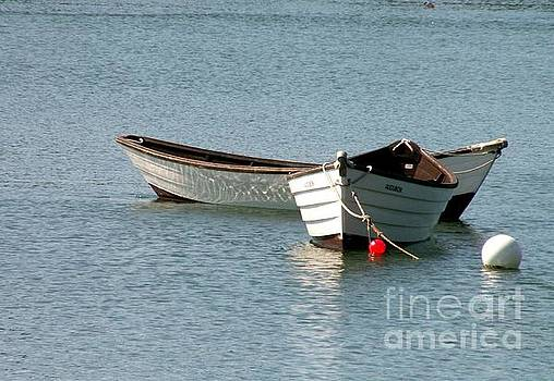 Boats on the Maine Coast by Theresa Willingham