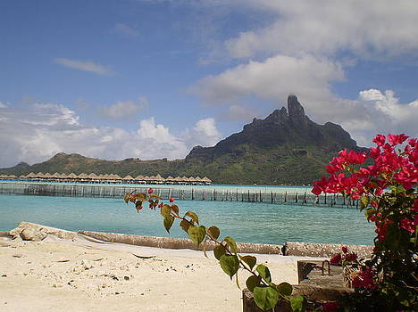 Bora Bora Private Beach by Paul Jessop