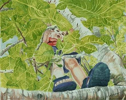 Boy in a Fig Tree by Kate Johnson