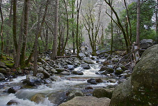 Bridalveil Creek by Sally Hanrahan